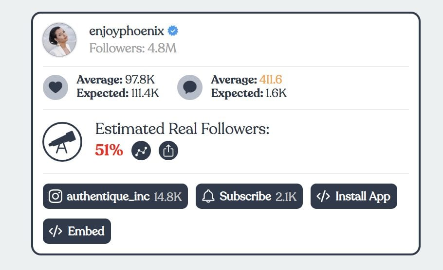 IG audit influencer audience analysis example